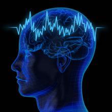 导致癫痫发病的因素有哪些?